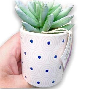 Desk Decor Faux Potted Succulent Plant